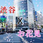 【定番&穴場】渋谷周辺で行くべきお花見厳選スポット情報をお届け!どんちゃん派?まったり派?どちらもこれで完璧。