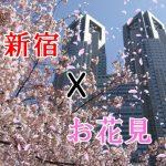 【定番&穴場】新宿周辺で行くべきお花見厳選スポット情報をお届け!