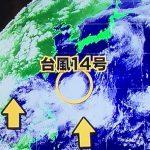 接近する台風14号の名前はヤギ!被災地への影響は?台風15号,台風16号の発生時期は?台風のたまごは?